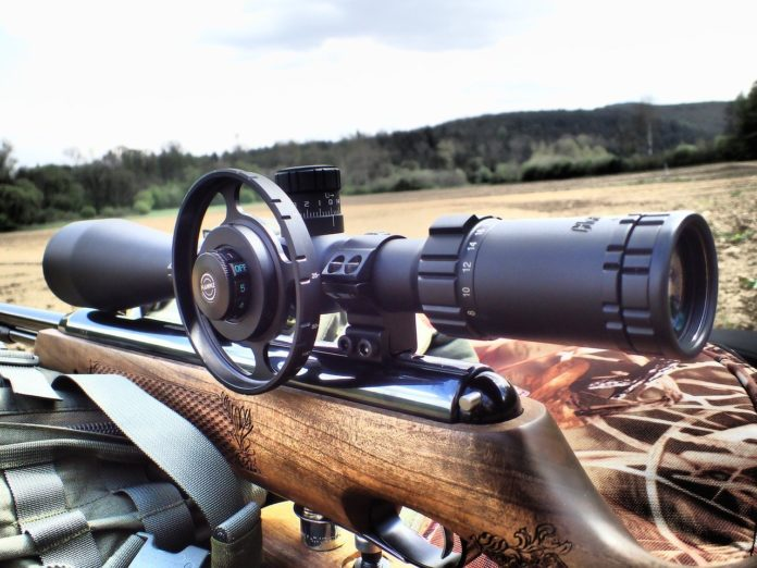 Weapon -Sights